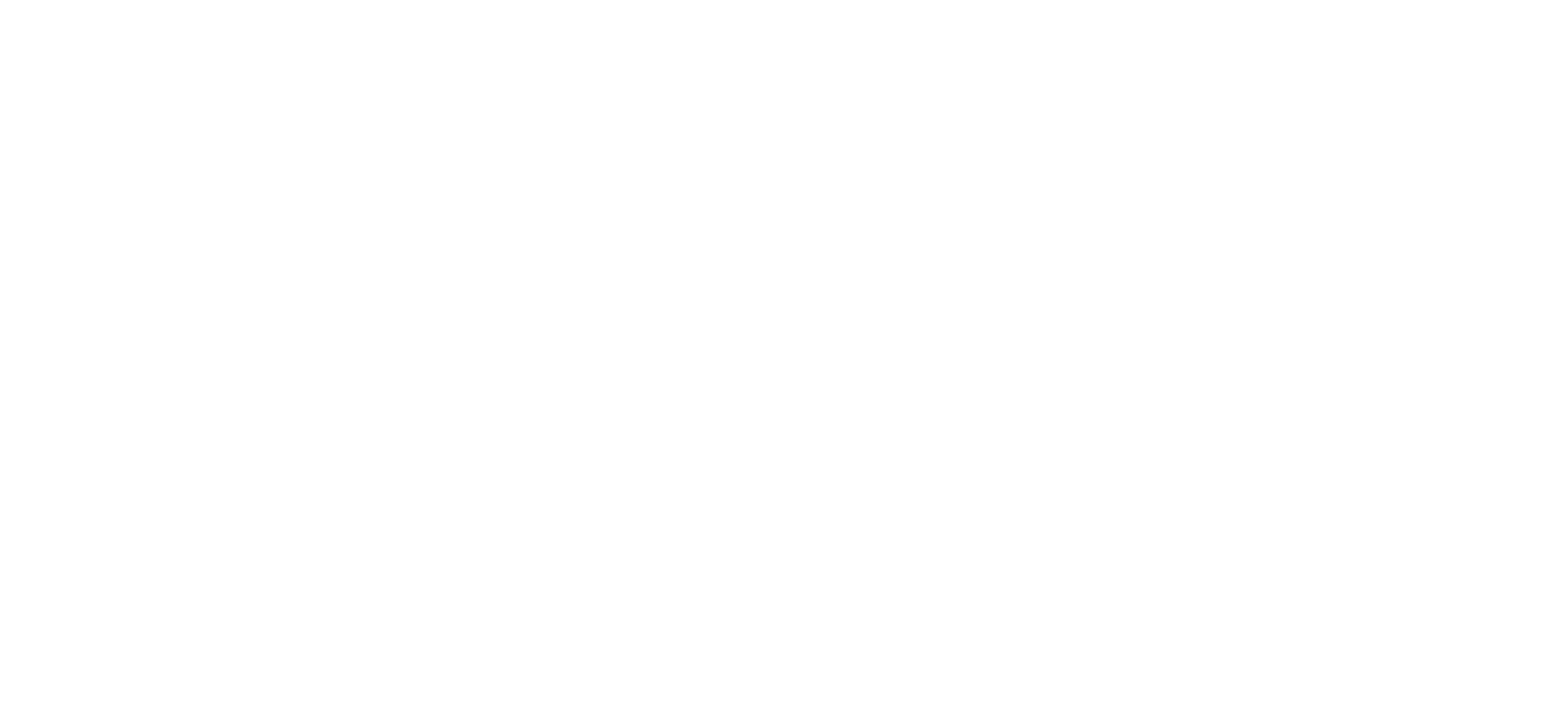 ferro_logo3